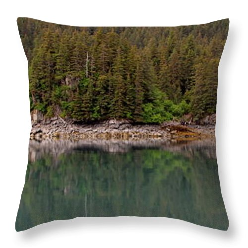 Shore Line Throw Pillow featuring the photograph Strip Of Beach by Rick Monyahan