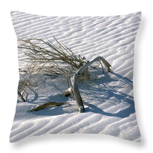 White Sands Throw Pillow featuring the photograph Struggle To Survive by Sandra Bronstein