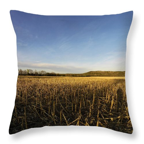 Kansas Throw Pillow featuring the photograph Stubble Field by William Moore