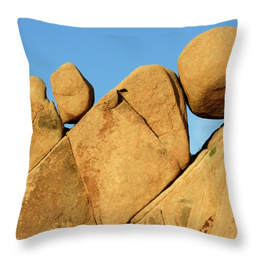 Joshua Tree National Park Throw Pillow featuring the photograph Stuck In The Middle With You by Bob Christopher