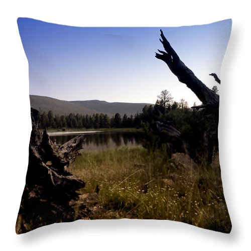Nature Throw Pillow featuring the photograph Stumped By The Lake by John K Sampson