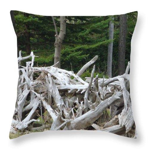 Stump Throw Pillow featuring the photograph Stumped by Peggy King