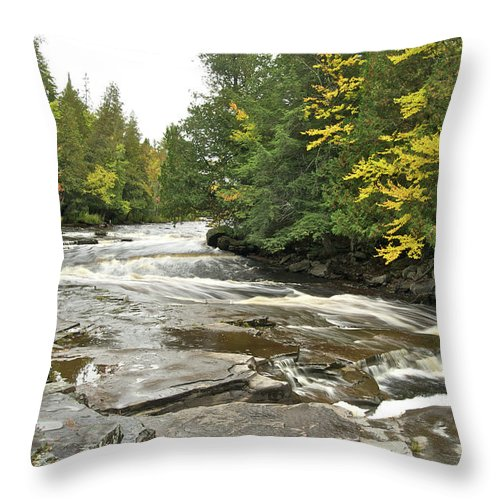 Michigan Throw Pillow featuring the photograph Sturgeon River by Michael Peychich