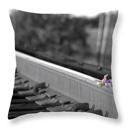 Rail Throw Pillow featuring the photograph Sublime by Elizabeth Hart