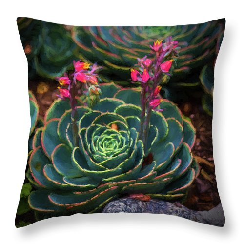Cactus Throw Pillow featuring the painting Succulent Flowers by Mike Penney
