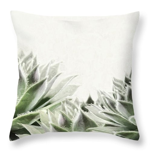 Succulents Throw Pillow featuring the mixed media Succulents by Lori Deiter