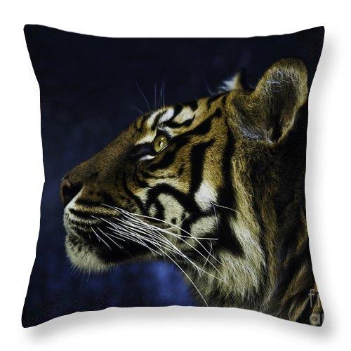 Sumatran Tiger Throw Pillow featuring the photograph Sumatran Tiger Profile by Sheila Smart Fine Art Photography