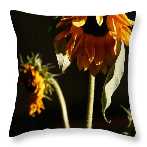 Summer Throw Pillow featuring the photograph Summer And The Beat Of Your Heart by Linda Shafer