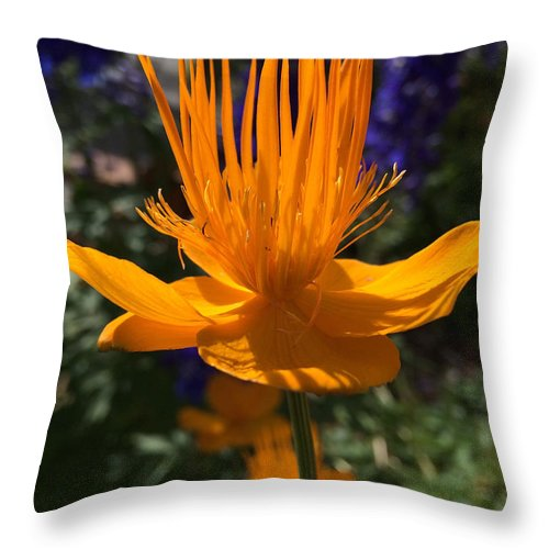Keystone Resort Throw Pillow featuring the photograph Summer Bloom by Becky Canterbury