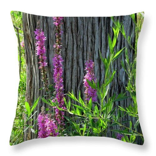 Nature Throw Pillow featuring the photograph Summer Bloom by Charles Ford