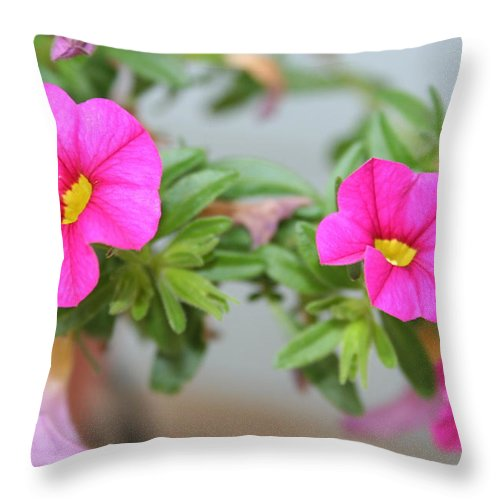 Flowers Throw Pillow featuring the photograph Summer Flowers by Linda Sannuti
