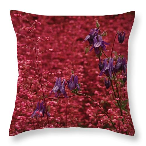 Nature Throw Pillow featuring the photograph Summer Flowers by Viktor Savchenko