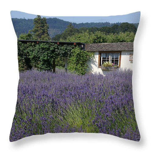 Lavender Fields Throw Pillow featuring the photograph Summer Lavender by Mary Ourada