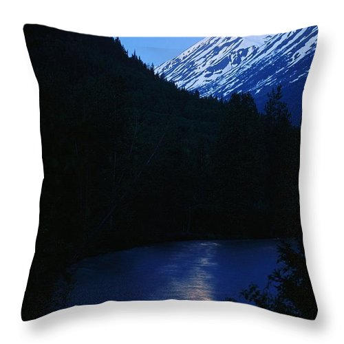 Moon Throw Pillow featuring the photograph Summer Moonlight by Ronnie Glover