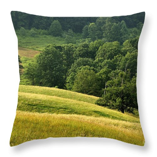 Summer Morning Throw Pillow featuring the photograph Summer Morning On The Farm by Thomas R Fletcher