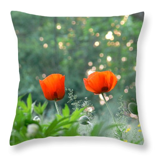 Summer Poppies Throw Pillow featuring the photograph Summer Poppies by Natalie LaRocque