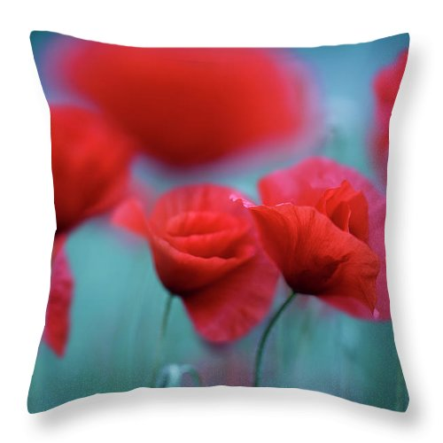Poppy Throw Pillow featuring the photograph Summer Poppy Meadow 3 by Nailia Schwarz