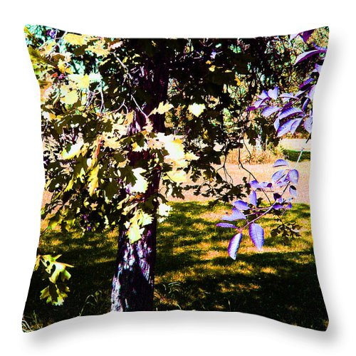 Tree In Summer Throw Pillow featuring the photograph Summer Sulstice by Joanne Smoley
