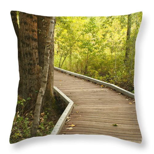 Trail Throw Pillow featuring the photograph Summer Walk by Idaho Scenic Images Linda Lantzy
