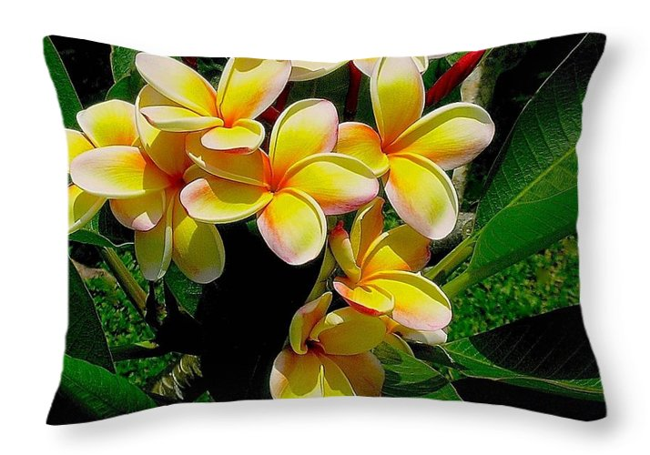 Summertime In Hawaii Throw Pillow featuring the photograph Summertime In Hawaii by James Temple