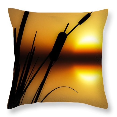 Tranquil Throw Pillow featuring the photograph Summertime Whispers by Bob Orsillo
