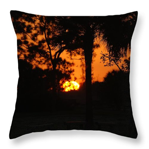 Nature Throw Pillow featuring the photograph Sun Ball by Rob Hans