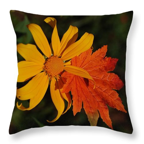 Pop Art Throw Pillow featuring the photograph Sun Flower And Leaf by Rob Hans