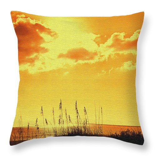Sun Throw Pillow featuring the photograph Sun by Ian MacDonald