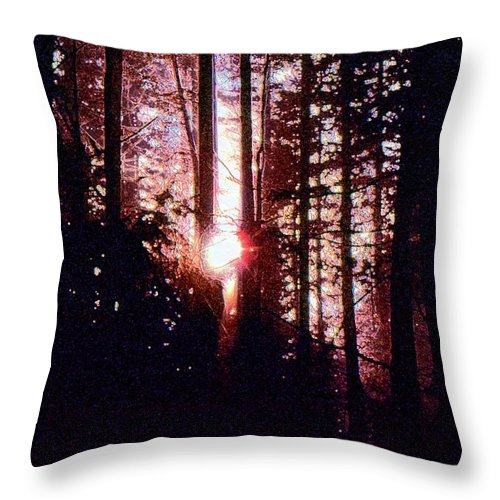 Abstract Throw Pillow featuring the digital art Sun In The Forest Two by Lyle Crump