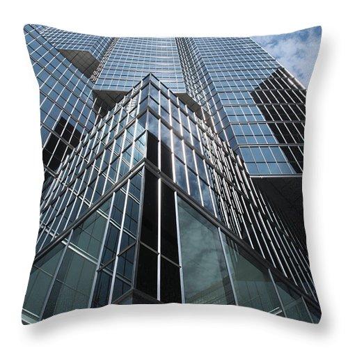 Office Throw Pillow featuring the photograph Sun Life by Ian MacDonald