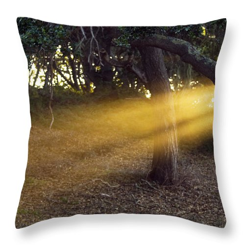 Landscape Throw Pillow featuring the photograph Sun Rays 2 by Jill Reger