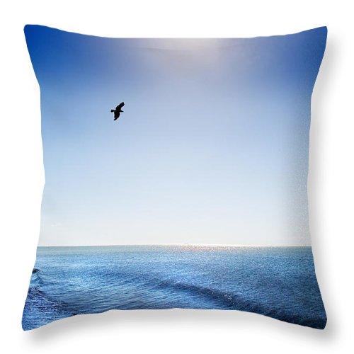 Sun Throw Pillow featuring the photograph Sun Shade by Mal Bray