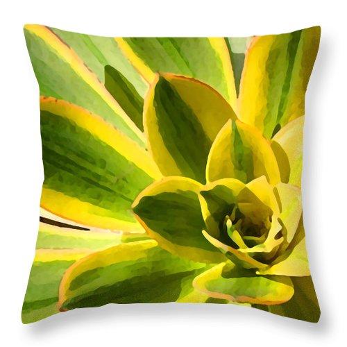 Landscape Throw Pillow featuring the photograph Sunburst Succulent Close-up 2 by Amy Vangsgard