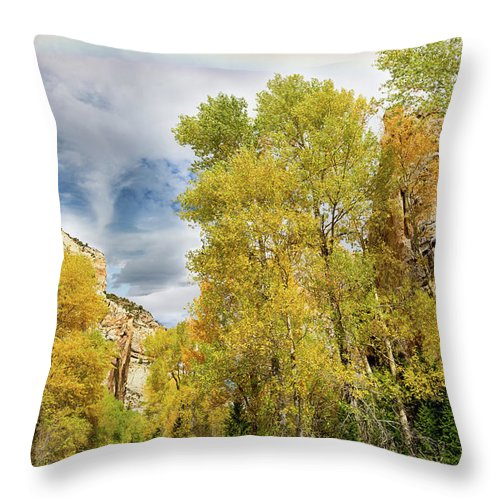 Autumn Landscape Throw Pillow featuring the photograph Sunday Drive by Kathleen Bishop