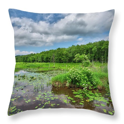 Sunday Throw Pillow featuring the photograph Sunday Drive by Steve Schaum