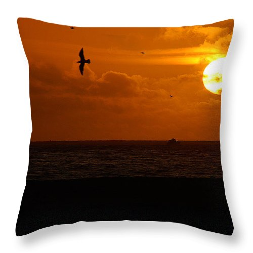 Clay Throw Pillow featuring the photograph Sundown Flight by Clayton Bruster