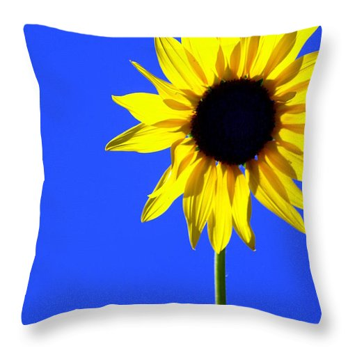 Flowers Throw Pillow featuring the photograph Sunflower 2 by Marty Koch