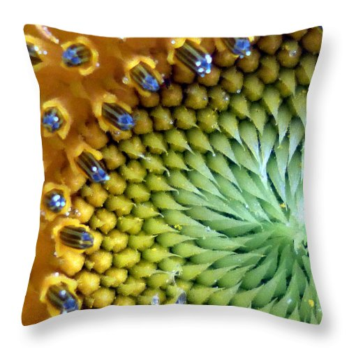 Throw Pillow featuring the photograph Sunflower by Anthony Renner