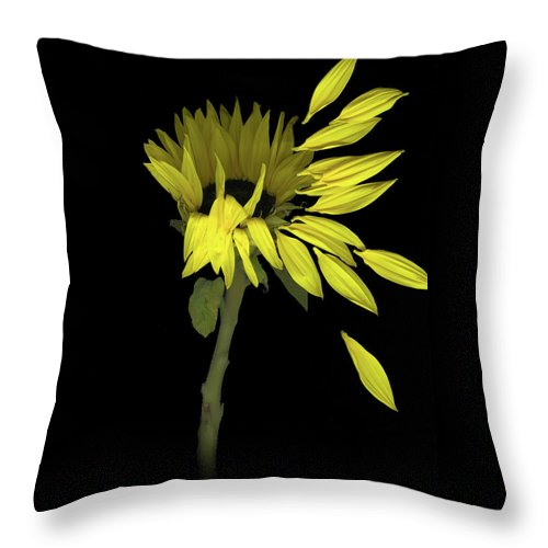 Sunflower Throw Pillow featuring the digital art Sunflower Breeze by Sandi F Hutchins