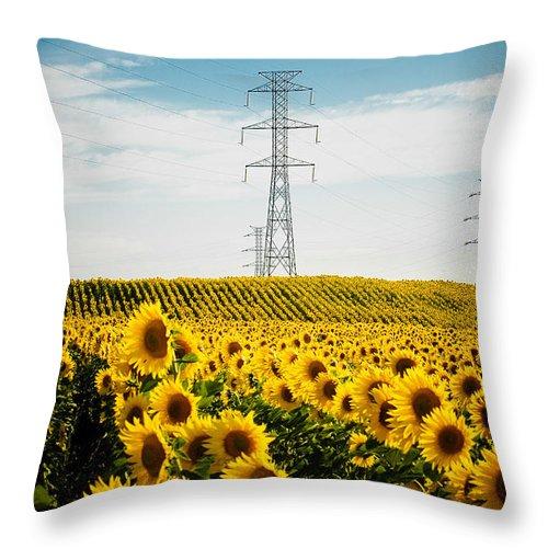 Sunflower Throw Pillow featuring the photograph Sunflower Field by Nelson Mineiro