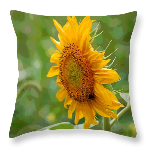 Sunflower Throw Pillow featuring the photograph Sunflower Fun by Suzanne Gaff