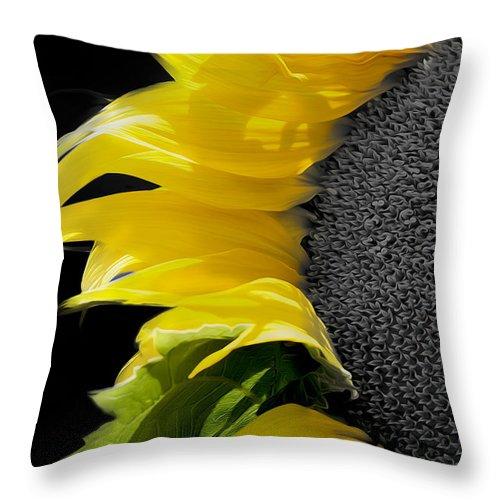 Sunflower Throw Pillow featuring the photograph Sunflower by Paul Danaher