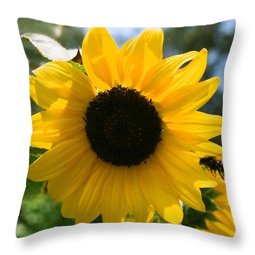 Flower Throw Pillow featuring the photograph Sunflower with Bee by Dean Triolo