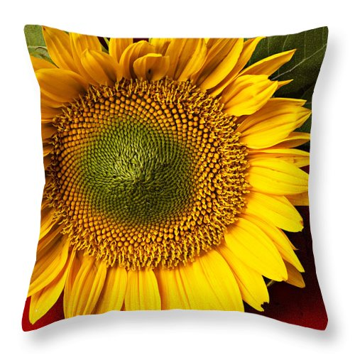 Sunflower Throw Pillow featuring the photograph Sunflower With Old Key by Garry Gay