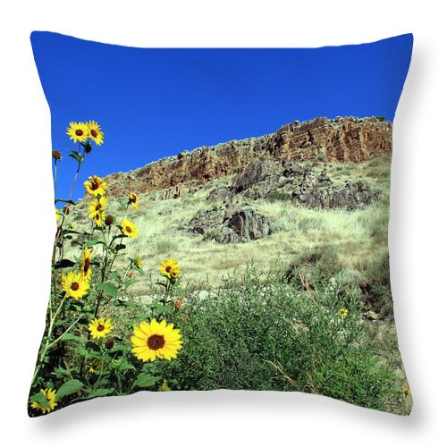 Sunflowers Throw Pillow featuring the photograph Sunflowers And Cliffs by George Jones