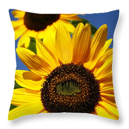 Sunflowers Throw Pillow featuring the photograph Sunflowers by Gaspar Avila