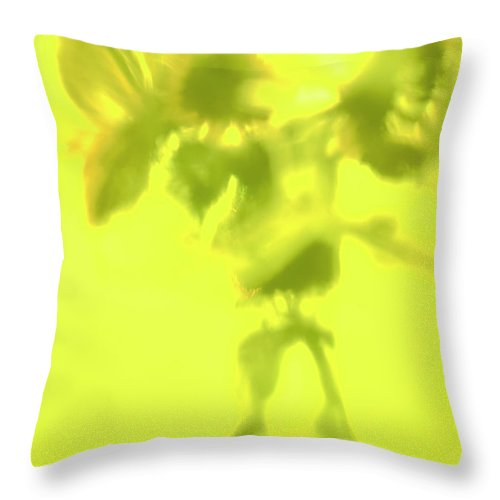 Sunflowers In Sun Abstract Fine Art Photography By Alexander Vinogradov Throw Pillow featuring the photograph Sunflowers In The Sun. by Alexander Vinogradov