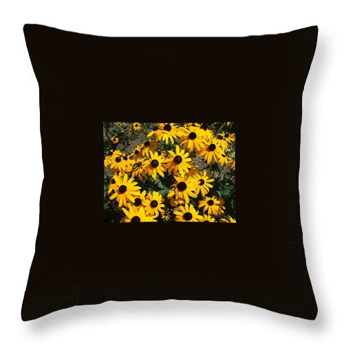 Landscape Throw Pillow featuring the photograph Sunflowers by Jo Dawkins