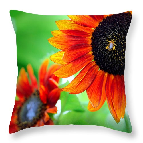 Sunflowers  Throw Pillow featuring the photograph Sunflowers by Mark Ashkenazi
