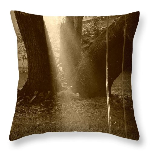 Sepia Throw Pillow featuring the photograph Sunlight On Swing - Sepia by Carol Groenen